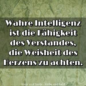 wahre.intelligenz.ist .die .faehigkeit